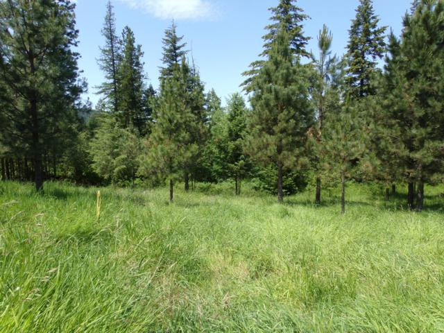 Lot 6 Rimrock Drive, St. Maries, ID 83861 (#19-1087) :: Embrace Realty Group