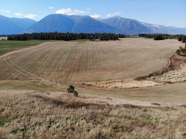 NKA Highway 95, Bonners Ferry, ID 83805 (#19-11120) :: Team Brown Realty