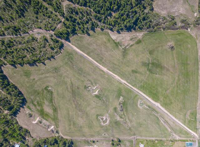 Tract 4 Sparrow Drive, Plummer, ID 83851 (#19-11157) :: Mall Realty Group