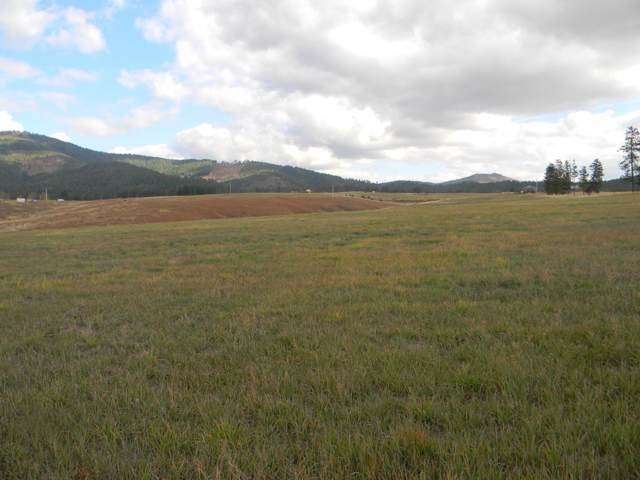 NKA 20 Ac. W. Side Moses Mt. Rd., Tensed, ID 83870 (#19-11179) :: Embrace Realty Group