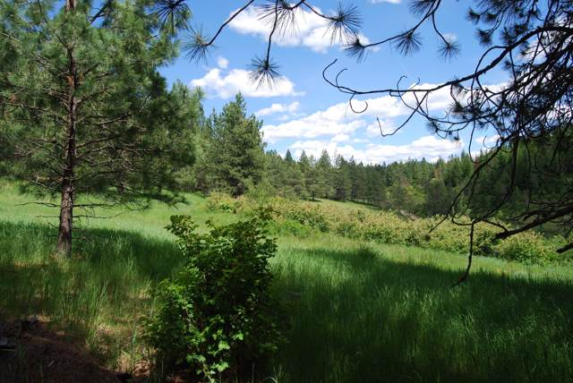20 Acres S Upper Black Lake Rd, Harrison, ID 83833 (#19-11228) :: Five Star Real Estate Group