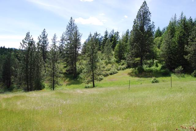 20 Acres 2 S Upper Black Lake Rd, Harrison, ID 83833 (#19-11230) :: Prime Real Estate Group