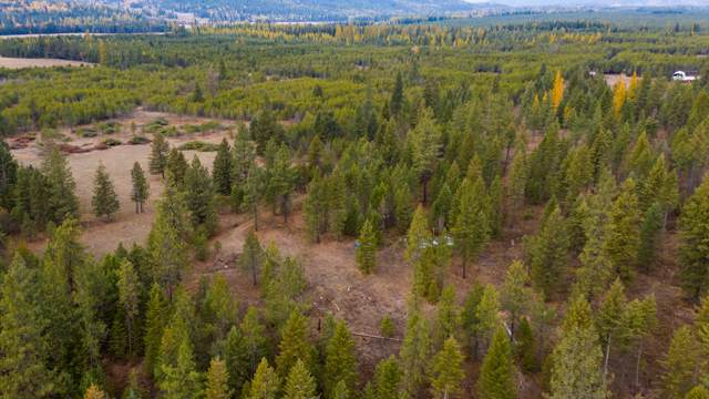 Moose Crk, Priest River, ID 83856 (#19-11251) :: Embrace Realty Group