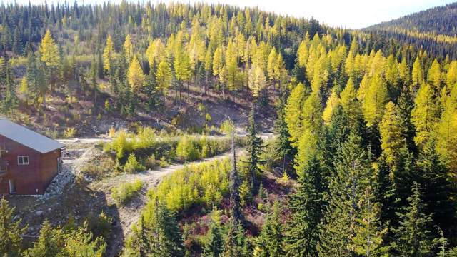 Lot 12 Blizzard Drive, Sandpoint, ID 83864 (#19-11256) :: Team Brown Realty