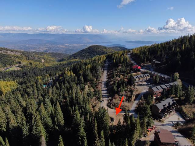 65 Avalanche, Sandpoint, ID 83864 (#19-11286) :: Flerchinger Realty Group - Keller Williams Realty Coeur d'Alene