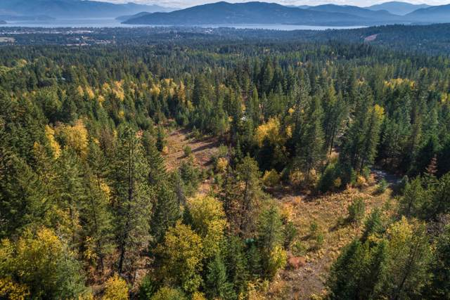 0 Janish Dr, Sandpoint, ID 83864 (#19-11578) :: Link Properties Group