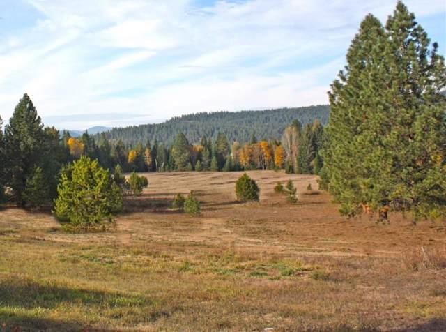 NNA Peak View Dr (50 Ac), Sagle, ID 83860 (#19-11607) :: Link Properties Group