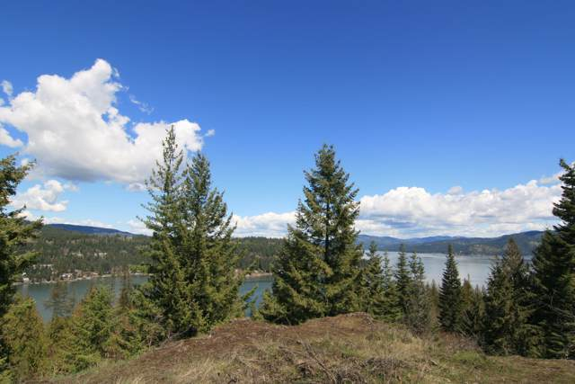 7977 W Vision Trail Rd, Worley, ID 83876 (#19-11718) :: Prime Real Estate Group