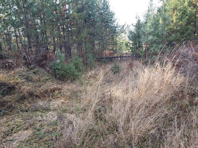 NKA N Sunset Hill Rd, Athol, ID 83801 (#19-11763) :: Link Properties Group