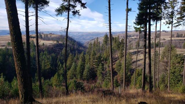 NKA Beaverslide Rd., Kamiah, ID 83536 (#19-11885) :: Groves Realty Group
