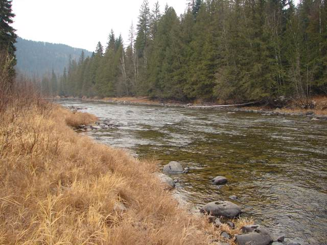 NNA Moyie River Road, Bonners Ferry, ID 83805 (#19-11890) :: Prime Real Estate Group