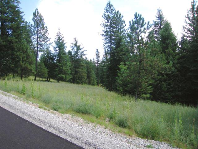 L5B5 Roanoak Rd, Rathdrum, ID 83858 (#19-1212) :: Five Star Real Estate Group
