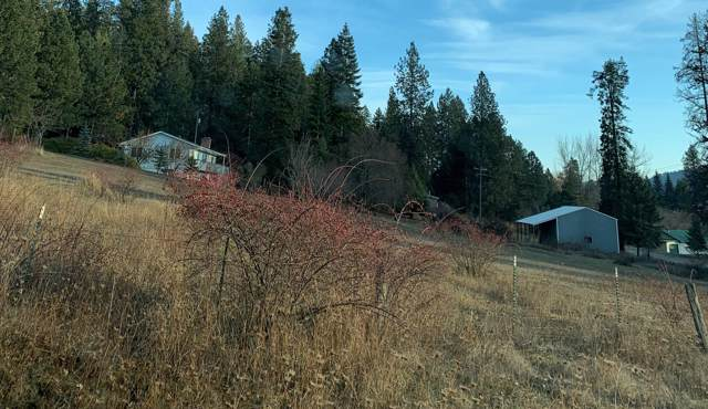 87707 Highway 3 N, St. Maries, ID 83861 (#19-12181) :: Embrace Realty Group
