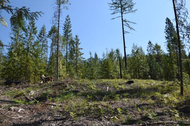 Parcel A Solomon Lake Rd, Moyie Springs, ID 83845 (#19-12282) :: Prime Real Estate Group
