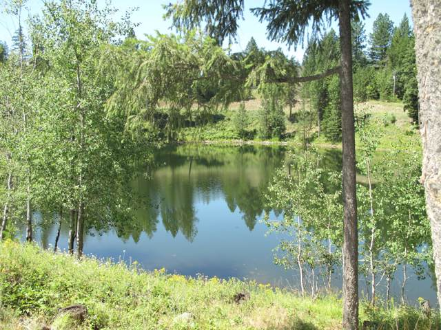 Blk 2 Lot 1 Blue Heron Lake, Sagle, ID 83860 (#19-12289) :: Flerchinger Realty Group - Keller Williams Realty Coeur d'Alene