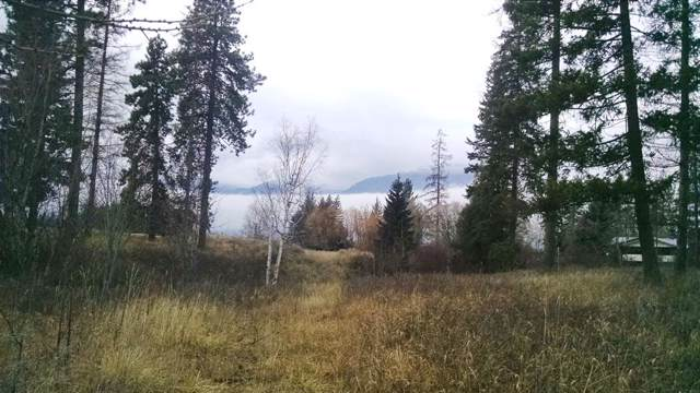 NNA Rock Creek, Bonners Ferry, ID 83805 (#19-12327) :: Chad Salsbury Group