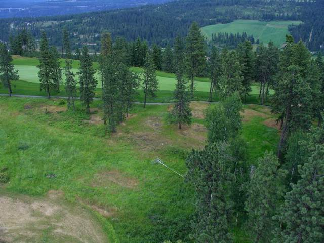 6398 S Old Barn Rd, Harrison, ID 83833 (#19-12562) :: Link Properties Group