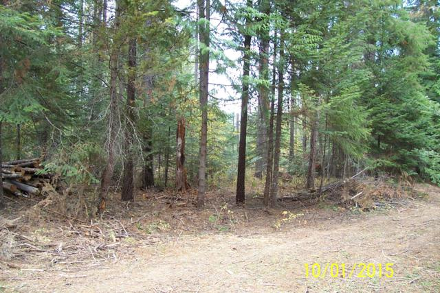 NNN Terry Trail, Priest River, ID 83856 (#19-1342) :: Northwest Professional Real Estate