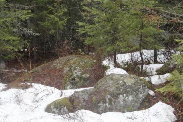 68 Riverview, Sandpoint, ID 83864 (#19-1372) :: Keller Williams Realty Coeur d' Alene