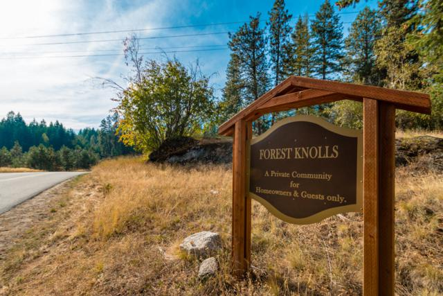 Lot 2 Forest Knolls, Sandpoint, ID 83864 (#19-1430) :: Prime Real Estate Group