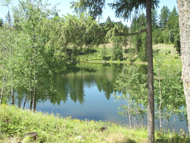 Blk 1 Lot 7 Blue Heron Lake, Sagle, ID 83860 (#19-1532) :: Groves Realty Group
