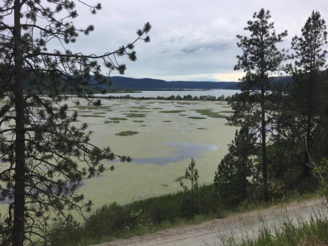 NNA Thompson Lake Rd., Harrison, ID 83833 (#19-170) :: HergGroup Coeur D'Alene