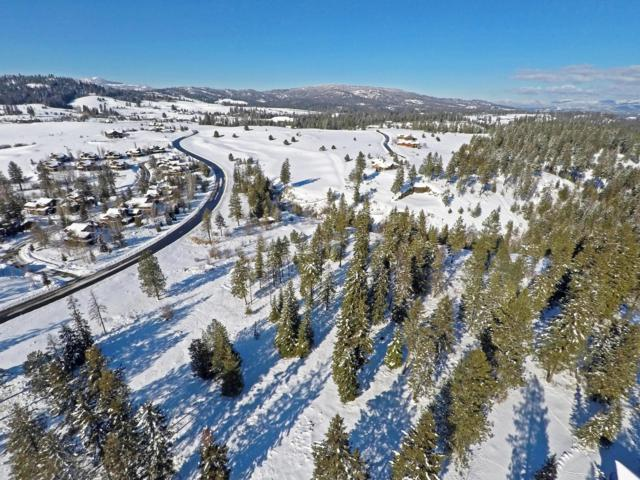 L21 W Platinum Dr, Coeur d'Alene, ID 83814 (#19-1709) :: ExSell Realty Group