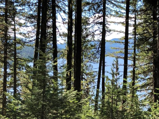NNA Lot 9 Rodgeview Terrace, Priest Lake, ID 83856 (#19-1828) :: Northwest Professional Real Estate