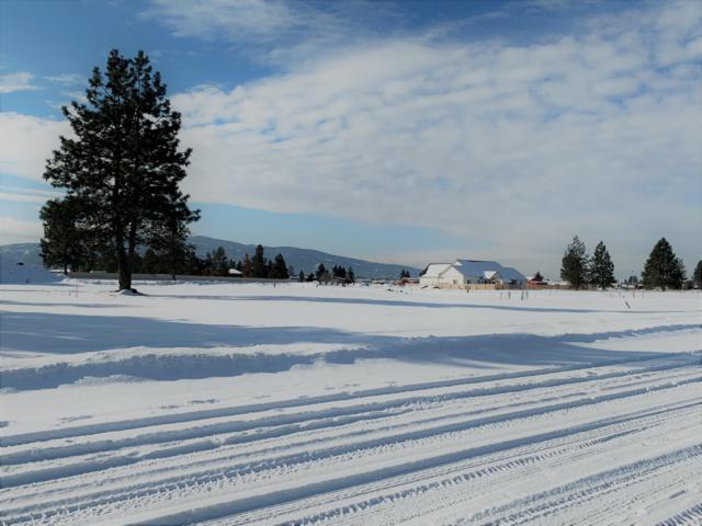 2953 N Bygone Way, Post Falls, ID 83854 (#19-1924) :: ExSell Realty Group