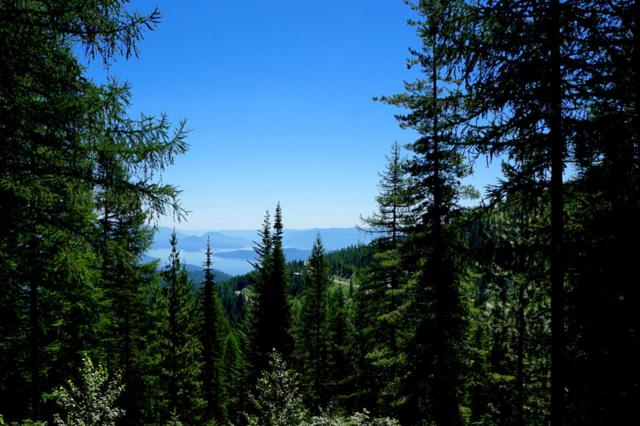 NNA Mogul Hill Blk 2 Lot 4, Sandpoint, ID 83864 (#19-2395) :: Link Properties Group