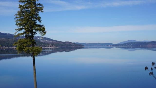 903 E Pugh Point Ct, Harrison, ID 83833 (#19-2444) :: Windermere Coeur d'Alene Realty