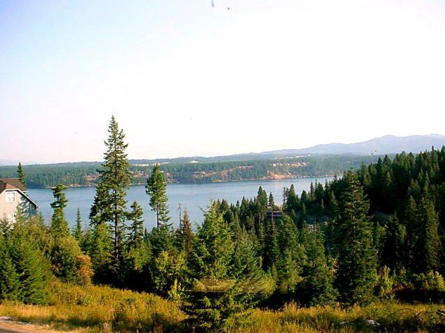 Lookout Dr L10 B1 L1, Coeur d'Alene, ID 83815 (#19-3137) :: Team Brown Realty