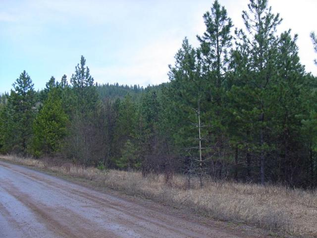 NKA Rio Vista Rd Lot17, Osburn, ID 83849 (#19-3282) :: Team Brown Realty