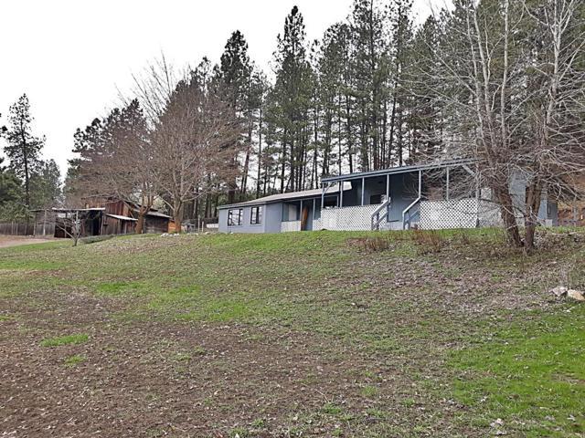 3151 Poirier Rd, Blanchard, ID 83804 (#19-3367) :: Northwest Professional Real Estate