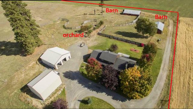 1905 Paradise Valley Rd, Bonners Ferry, ID 83805 (#19-3455) :: Groves Realty Group
