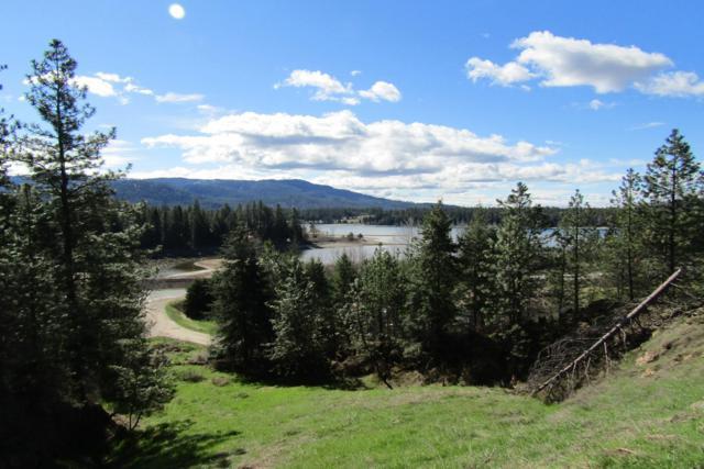 25 Pine Leaf Road, Laclede, ID 83841 (#19-3492) :: CDA Home Finder