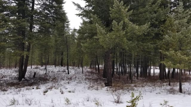 NNA E Hwy 54, Spirit Lake, ID 83869 (#19-364) :: Team Brown Realty