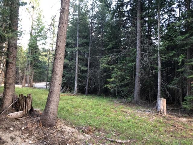 141 Chase Lake Rd, Priest Lake, ID 83856 (#19-3680) :: Mandy Kapton | Windermere