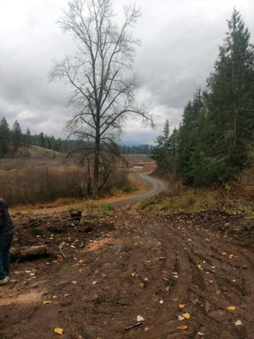 Rose Creek, Rose Lake, ID 83810 (#19-385) :: HergGroup Coeur D'Alene