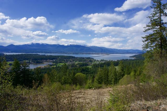 Lot 1 Forever View, Sagle, ID 83860 (#19-4086) :: Windermere Coeur d'Alene Realty