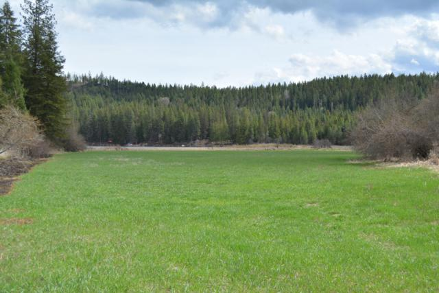 Lot 2 Kelso Lake Rd, Athol, ID 83801 (#19-4216) :: Team Brown Realty