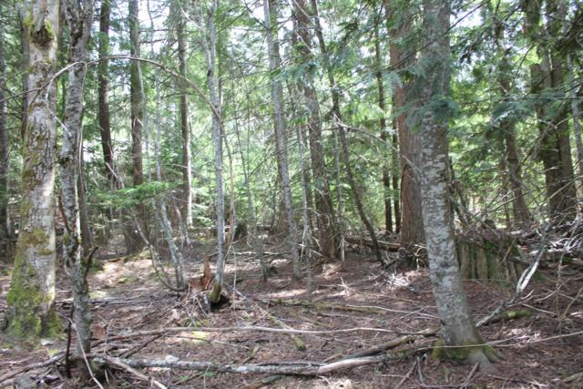 NKA Wander Lane, Sagle, ID 83860 (#19-4383) :: Team Brown Realty