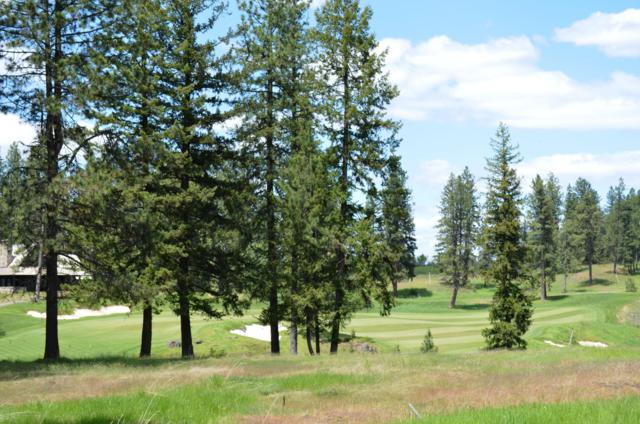 2715 E Lower Pasture Rd, Harrison, ID 83833 (#19-4618) :: Prime Real Estate Group