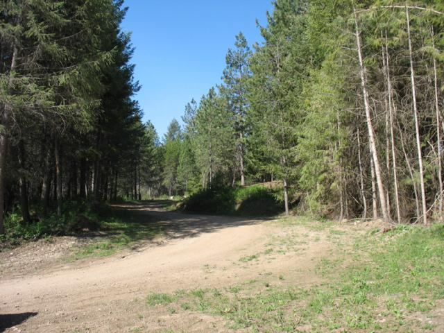 560 Lot 4 That A Way, Spirit Lake, ID 83869 (#19-4619) :: Keller Williams Realty Coeur d' Alene