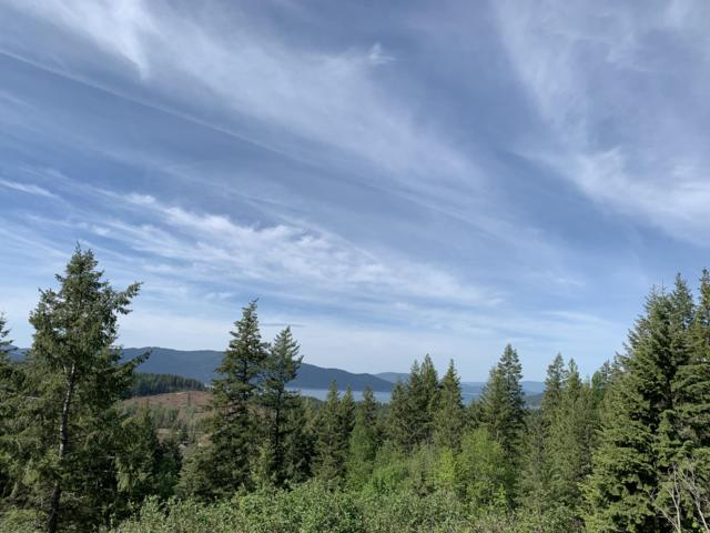 NNA Trappers Loop, Sandpoint, ID 83864 (#19-4743) :: Prime Real Estate Group