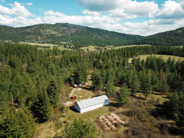 41971 S. Highway 3, St. Maries, ID 83861 (#19-4925) :: Groves Realty Group