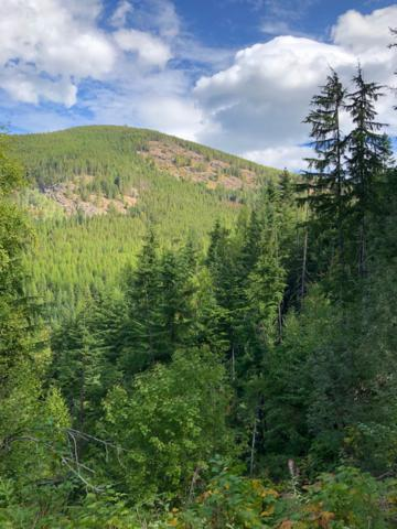 Off Of Trapper Creek Rd., Sandpoint, ID 83864 (#19-500) :: Team Brown Realty