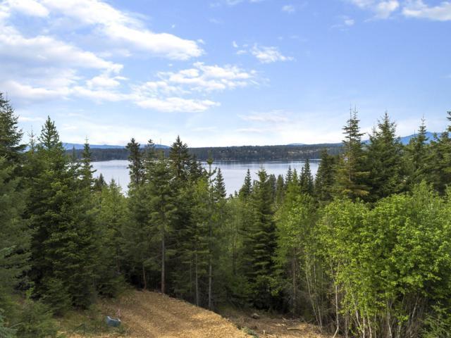 Upper Hayden Lake Rd, Coeur d'Alene, ID 83814 (#19-5010) :: Team Brown Realty