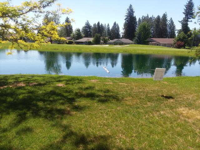 L3 N Molly Ln, Rathdrum, ID 83858 (#19-5034) :: Northwest Professional Real Estate