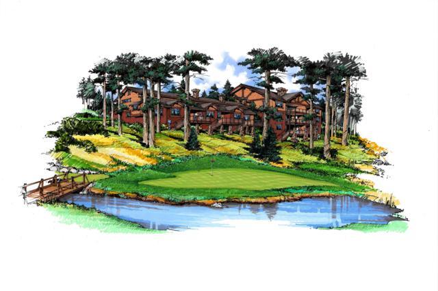 NNA Divot Drive #402, Priest Lake, ID 83856 (#19-5103) :: Northwest Professional Real Estate